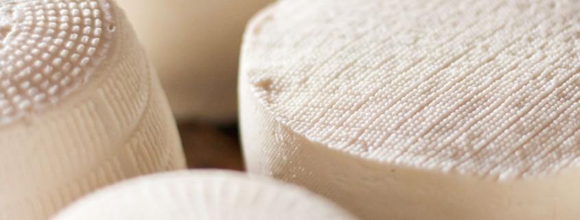 Gonda artisan cheese