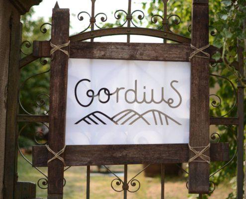 Gordius Pince logo
